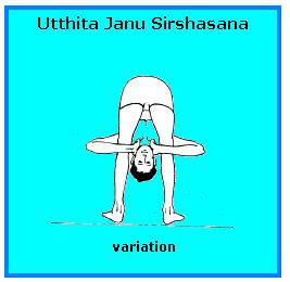 healthier you  utthita janu sirshasana